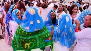 Eritrean Wedding