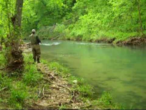 Missouri rainbow trout fishing montauk state park youtube for Missouri out of state fishing license