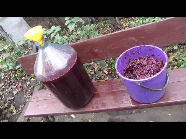 Как чачу из винограда сделать
