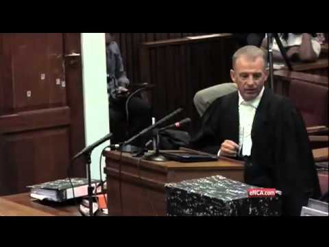 Oscar Pistorius Trial: Nel asks for postponement