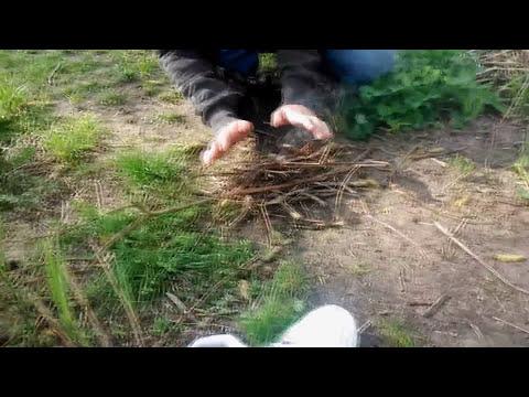 Napster - BEDO (Official Video)  [NAPPY x BEDO VLOG #2] [HD/HQ]