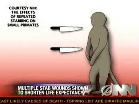 Multiple Stab Wounds May Be Harmful To Monkeys