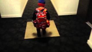 Watch Takota Lioness video