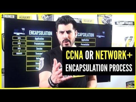 CCNA Network+ THE ENCAPSULATION PROCESS (PDUs) Detail Explanation