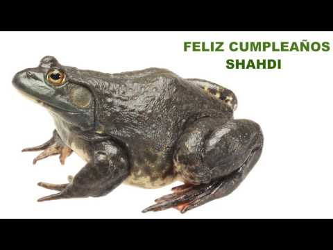 Shahdi  Animals & Animales - Happy Birthday