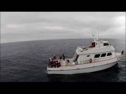 Apollo Bluefin Tuna fishing footage with drone quadcopter