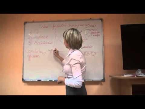 Мальцева степанова марина диета при противопаразитарной программе