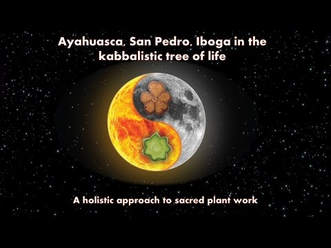 Ayahuasca, Iboga, San Pedro and the Kabbalistic Tree of Life - a holistic approach to plant medicine