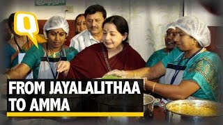 The Quint: The Rise of Amma aka Jayalalitha: India's 'Mother' Politician