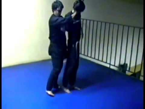 Tenshikan Ninjutsu  Aikijujutsu   Techniques submission 1 Image 1