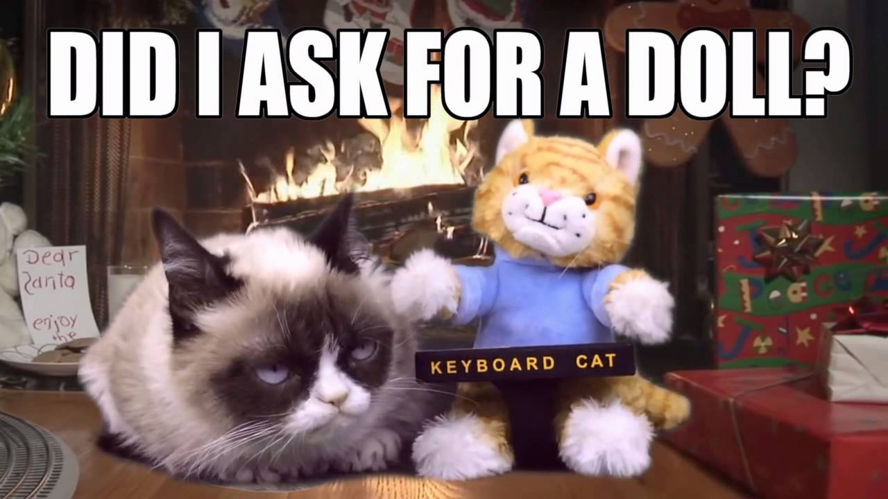 grumpy cat gets the keyboard cat toy for christmas   youtube