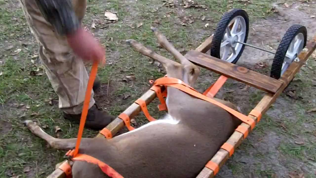 Deer Cart Homemade Smoaks Sc Youtube