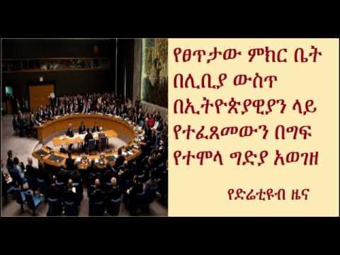 DireTube News - UN Security council condemns Libya Killings