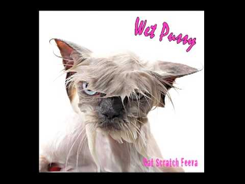 Cat Scratch Feeva By Wet Pussy video