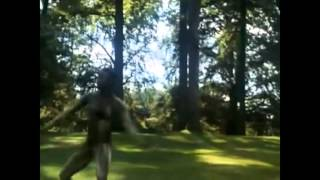 Watch Stevie Wonder Black Orchid video