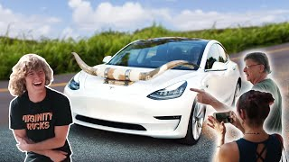 Putting Horns On My Tesla!