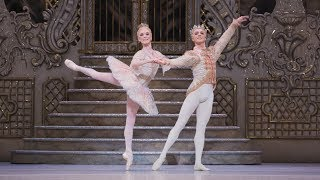 The Icing On The Cake The Secrets Of Dancing The Nutcracker 39 S Sugar Plum Fairy The Royal Ballet