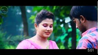 Amar Hridoy O Pinjira Posha Moyna Pakhi Re   হৃদয়ো পিঞ্জিরার পোষা পাখিরে   Bangla Music Video 2017