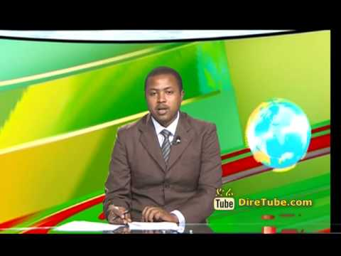 The Latest Amharic News From EBC Nov 24, 2014