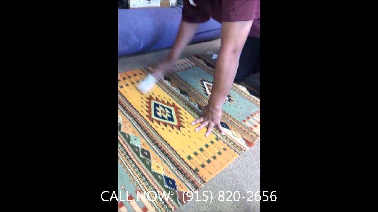 How To Remove Pet Hair Dog Hair Or Cat Hair From Furniture Rugs And Carpets El Paso Carpet