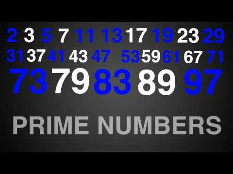 Prime Numbers Rap Typography (Math)