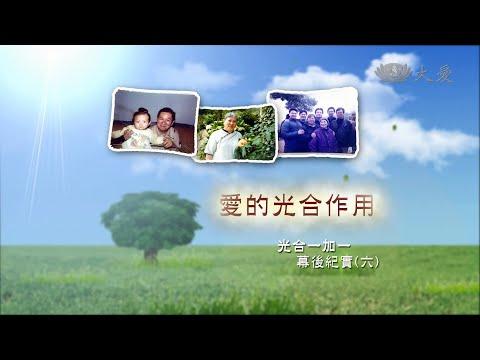 台灣-戲說人生-20141019-光合一加一-第6集 愛的光合作用