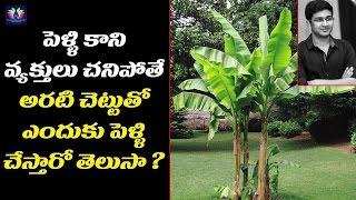 పెళ్ళి కాని వ్యక్తులు చనిపోతే అరటి చెట్టుతో ఎందుకు పెళ్ళి చేస్తారో తెలుసా? | Telugu Full Screen