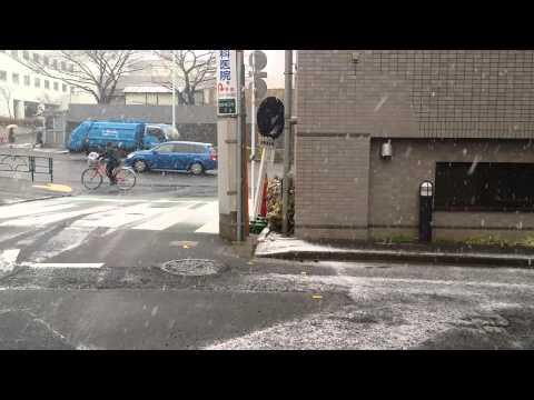 30th January 2015 snowfall, Shinjuku, Tokyo