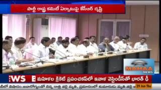 CM KCR Focus On State CommitteeandNominated Posts|Mahaa News Story