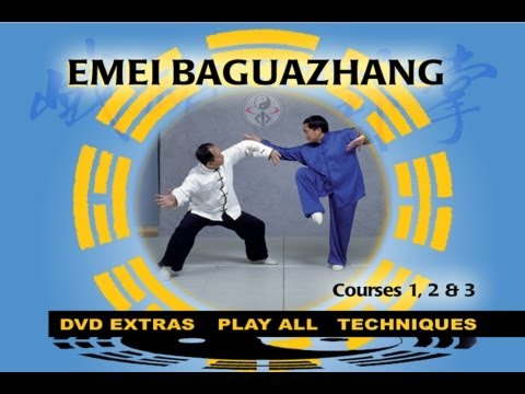 Baguazhang (YMAA Eight Trigrams Palm Kung Fu) Liang, Shou-Yu