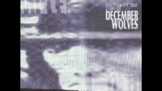 Watch December Wolves The Gard Division video