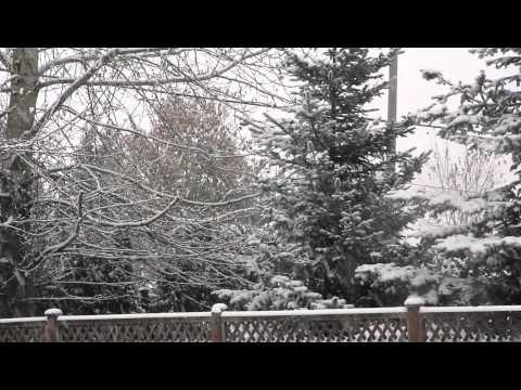 snow fall langley canada 2010