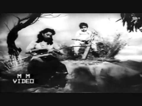Mere Chand Mere Laal,jiyo Hazaro Saal..suraiya lata shakeel B nuashad diwana1952..a Tribute video