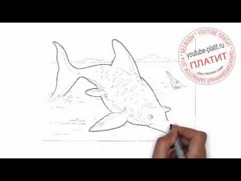 Видео как нарисовать хищника карандашом поэтапно