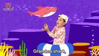 Baby Shark -Cute -   Songs for Children - Cùng bé học tiếng anh