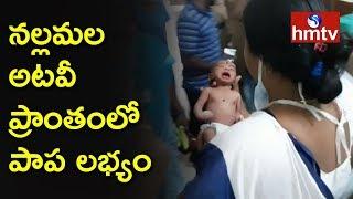 నల్లమల అటవీ ప్రాంతంలో పాప లభ్యం | Baby Found in Nallamala Forest | hmtv