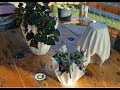 How To Make Cement Planters   DIY Cement Planter