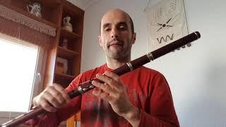 FIFB. Meyer/Clementi/Baubet irish-classical flutes