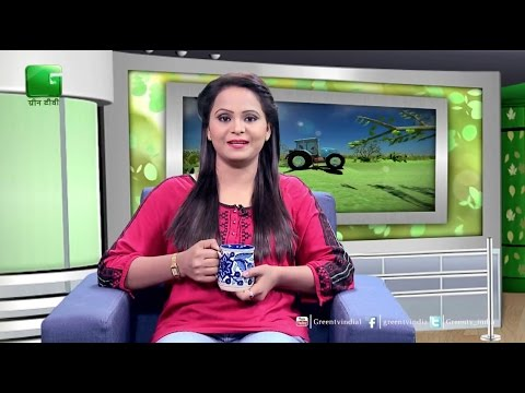 Baatein Kheti Ki: Chay Ki Kheti(Tea Farming) - Full Episode Green TV