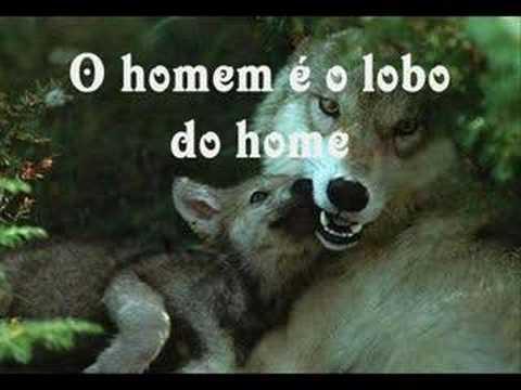 Pitty - O Lobo