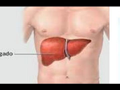Desintoxicación del hígado con diente de león. Liver detox with Dandelion. Ecodaisy