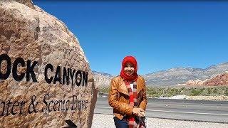 Kisah Komunitas Muslim di Las Vegas, Amerika Serikat - Muslim Travelers