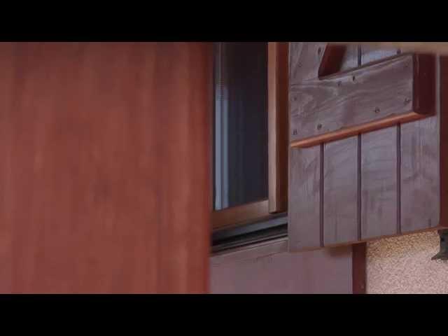 ¿Qué tamaño de casas de madera se pueden fabricar?