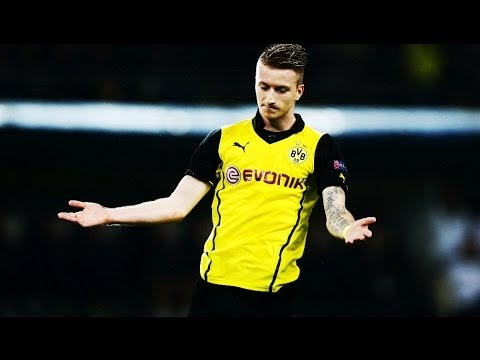Marco Reus - In Flames | Skills, Goals & Assists 2013/14 ||HD||