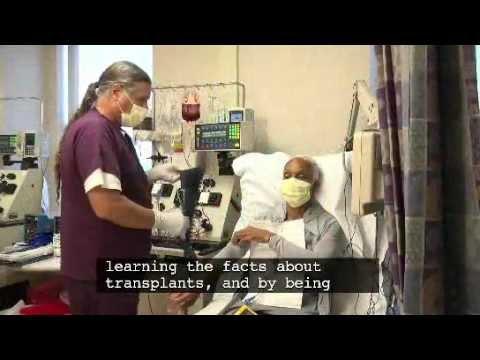 Bone Marrow Transplant Patient Information: Chapter 1 - Your Transplant Concerns