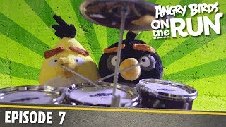 Angry Birds on The Run   Click Bait - S1 Ep7