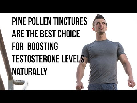 Benefits of Pine Pollen Tinctures: When and Why to Use the Tincture Form