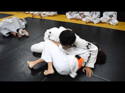 Kids BJJ Training Feb 2014   2