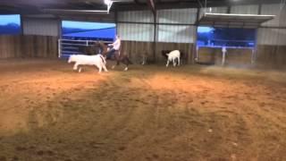 Tripp- Jared Lesh cowhorses