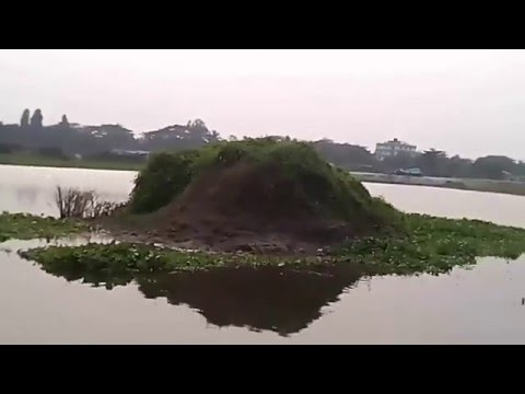 The most Beautiful Lake View in  Dhaka, Bangladesh -2016